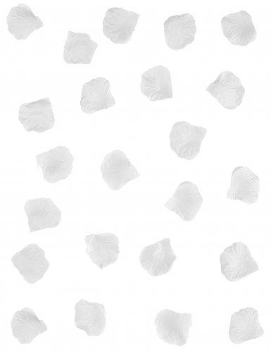 288 witte rozeblaadjes-1