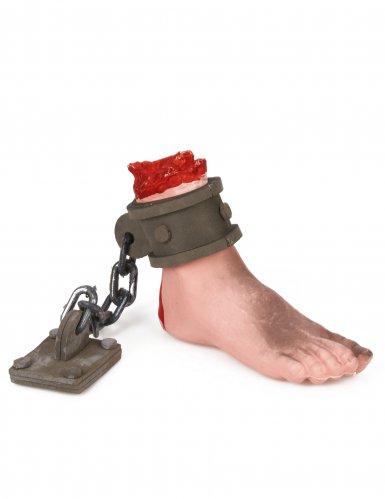 Bloederige voet met ketting