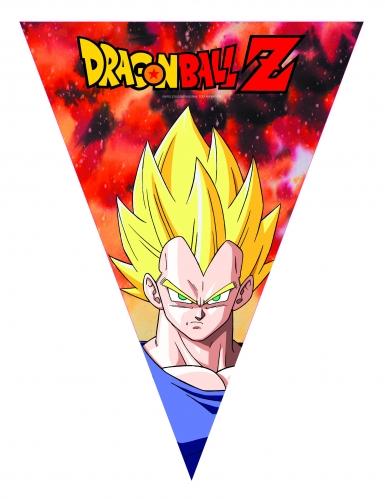 Dragon Ball Z™ verjaardagsslinger-1