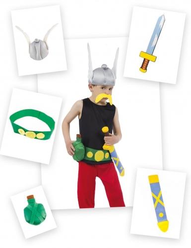 Asterix verkleedset met 5 accessoires