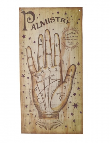 Waarzegster handpalm poster