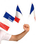 Supportersvlag van Frankrijk