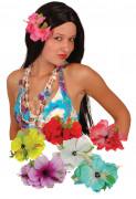 Hawaïaanse Hibiscusbloemenbaret