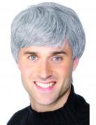 Moderne grijze pruik voor mannen