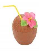 Hawaïaanse kokosnoot