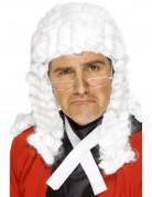 Pruik rechter voor heren Feestartikel
