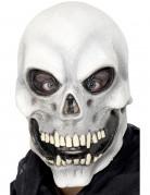 Grijs skeletmasker voor volwassenen