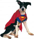 Superman™-kostuum voor honden of katten