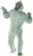 Weerwolfkostuum voor volwassenen Halloween