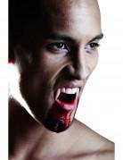 Halloween luxe vampier gebit voor volwassennen
