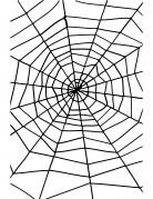 Halloweenspinnenweb