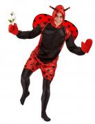 Lieveheersbeestjes kostuum voor volwassenen