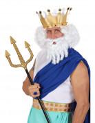 Witte pruik van een Olympische god voor mannen