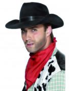 Zwarte cowboyhoed Hilversum