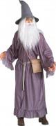 Gandalf-kostuum uit Lord of The Rings™ voor volwassenen