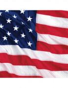 Set van papieren servetten Amerikaanse vlag