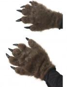 Monster handschoenen