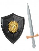Leeuwen ridder set voor volwassenen