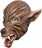 Wolvenmasker met snuit voor volwassenen Halloween