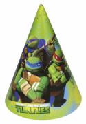 Set Ninja Turtles™ feesthoedjes