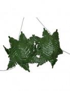 BH groen Hawaï blad voor dames