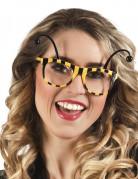 Bijen bril voor volwassen