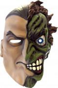 Integraal Double-Face Batman™masker voor volwassenen