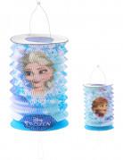 Frozen™ papieren lantaarn Elsa of Olaf