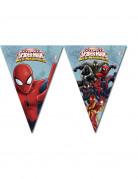 Spiderman™ vlaggenlijn