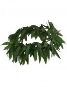 Hawaiiaanse haarband met tropische blaadjes