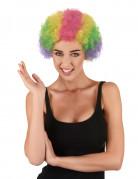 Veelkleurig afro clown pruik voor volwassenen