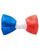 Driekleurige Frankrijk strik