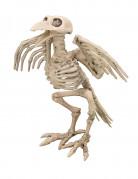 Raaf skeletdecoratie