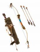Luxe indianenboog met pijlen
