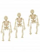 3 skelet ophangdecoraties
