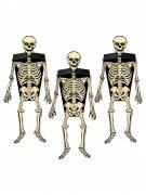 3 zwarte en witte skelet muurdecoraties