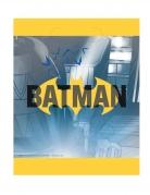 8 Batman™ cadeautasjes