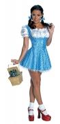 The Wizard of Oz™ Dorothy kostuum voor volwassenen