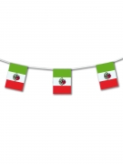 Mexicaanse supporter vlag 5 meter