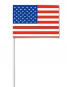 Papieren USA vlag