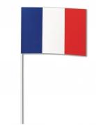 Papieren Frankrijk vlag