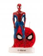 3D verjaardagskaars Spiderman™