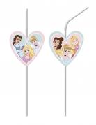 6 Disney Princesses™ rietjes