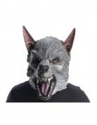 Rampage™ Ralph masker voor volwassenen