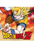 20 papieren Dragon Ball Z™ servetten
