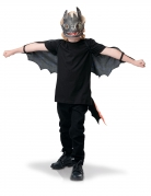 Toothless How to Train Your Dragon vleugels en masker