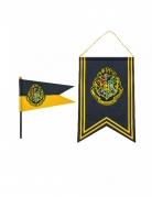 Harry Potter™ Zweinstein banner en vlag